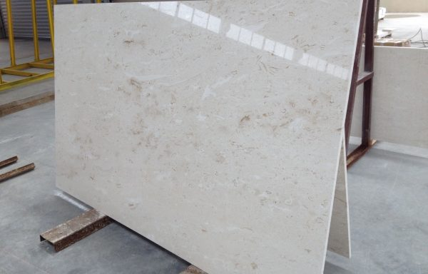 Shell Reef Limestone Slab