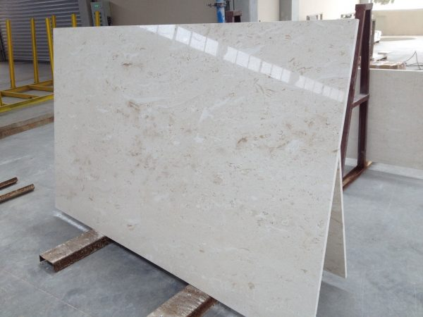 SHELL REEF LIMESTONE SLABS